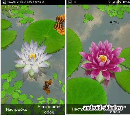 3D Lotus - ����� ���� � ������� ������� ��� Android