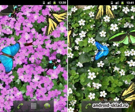 Butterfly - ����� ���� � ��������� � ������� ��� Android