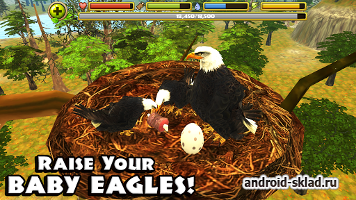 Eagle Simulator - будь орлом