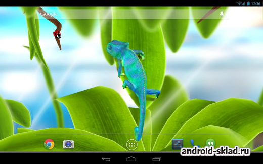Chameleon 3D Live Wallpaper - ���� � ����������
